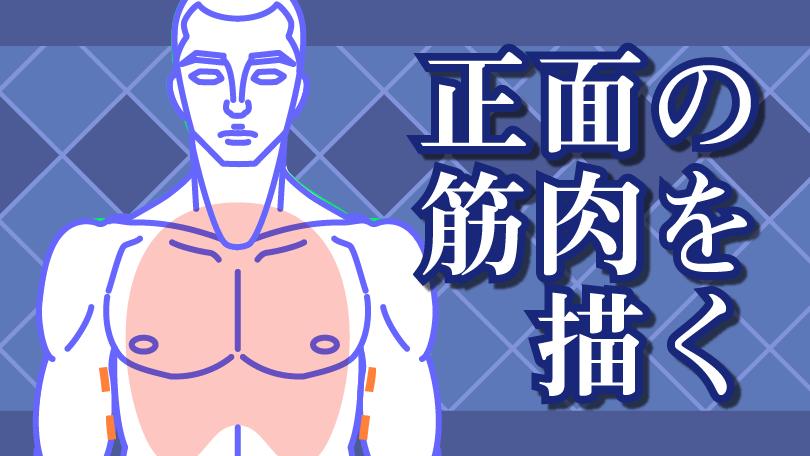 第4回 正面の筋肉を描く