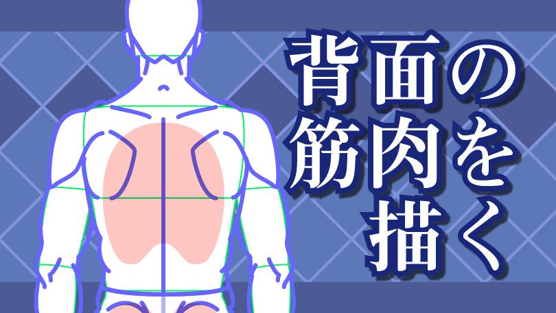 第6回 背面の筋肉を描く