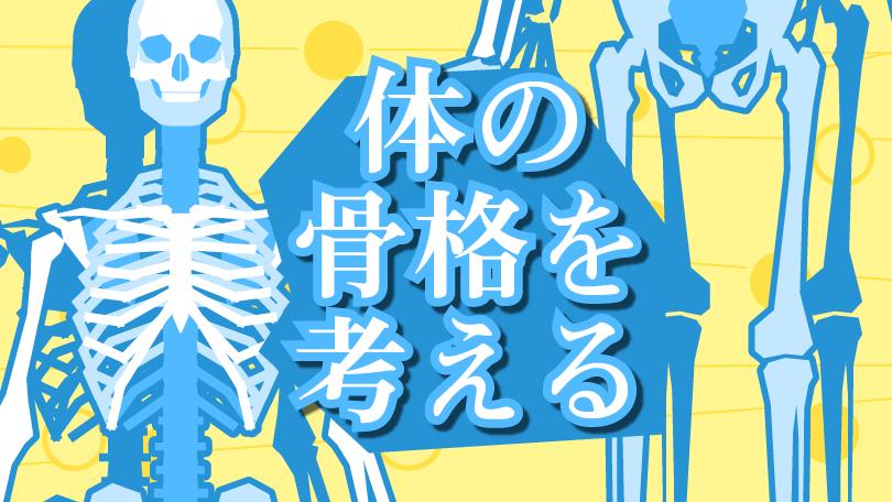 第1回 体の骨格を考える