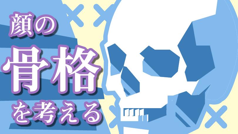 顔の基礎コース 第5回 顔の骨格を考える Sensei By Pixiv